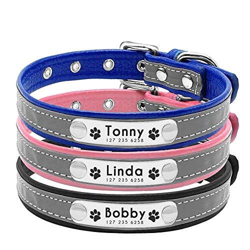 Berry Weich Gepolstert Custom Hundehalsband - Personalisierte Gravur ID Halsbänder mit Namensschild – reflektierend Hunde Hund Katze Halsband – ESA ID-Tag so Geschenk,Pink,XS
