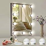 SELFILA Vanity Lights for Mirror, Adjustable RGB Color DIY Hollywood Style 10 Bulbs Led Vanity Mirror Lights kit,Stick on Lights,Bathroom,Makeup(Mirror & USB Charger Not Include)