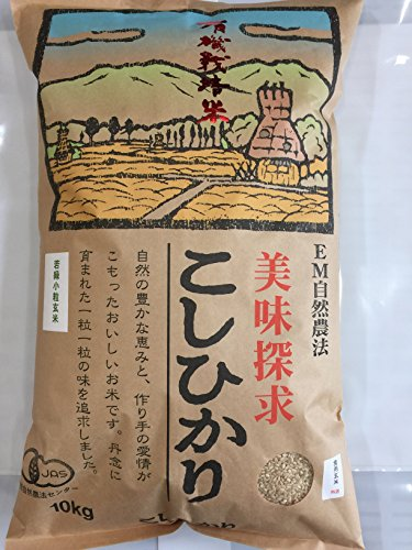 無農薬 有機栽培米 JAS認定 玄米 令和2年産 石川県産 有機若緑小粒玄米 食用玄米   (10kg)