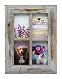 Philip Whitney Barnwood Grey Collage Photo Frame - Holds Four 4x6 Pictures