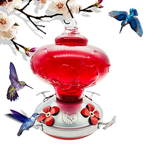 REZIPO Hummingbird Feeder with Perch - Hand Blown Glass - Red - 22 Fluid Ounces Hummingbird Nectar Capacity Include Hanging Wires