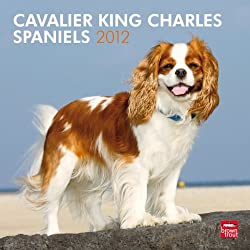 Cavalier King Charles Spaniels 2012 Calendar[Browntrout Publishers][Amazon]