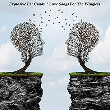 Love Songs for the Wingless