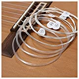 Smiger Classical Guitar Strings Nylon Light Tension Silver Wound guitarra Beginner Acoustic String Silver Wound Great Bright Rust Prevention.028-.043 (1 Pack)
