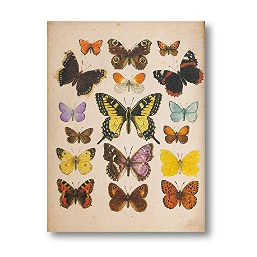 CNHNWJ Mariposas Vintage Póster y Impresiones Insectos Antigüedades Ilustración Pared Arte Lienzo...