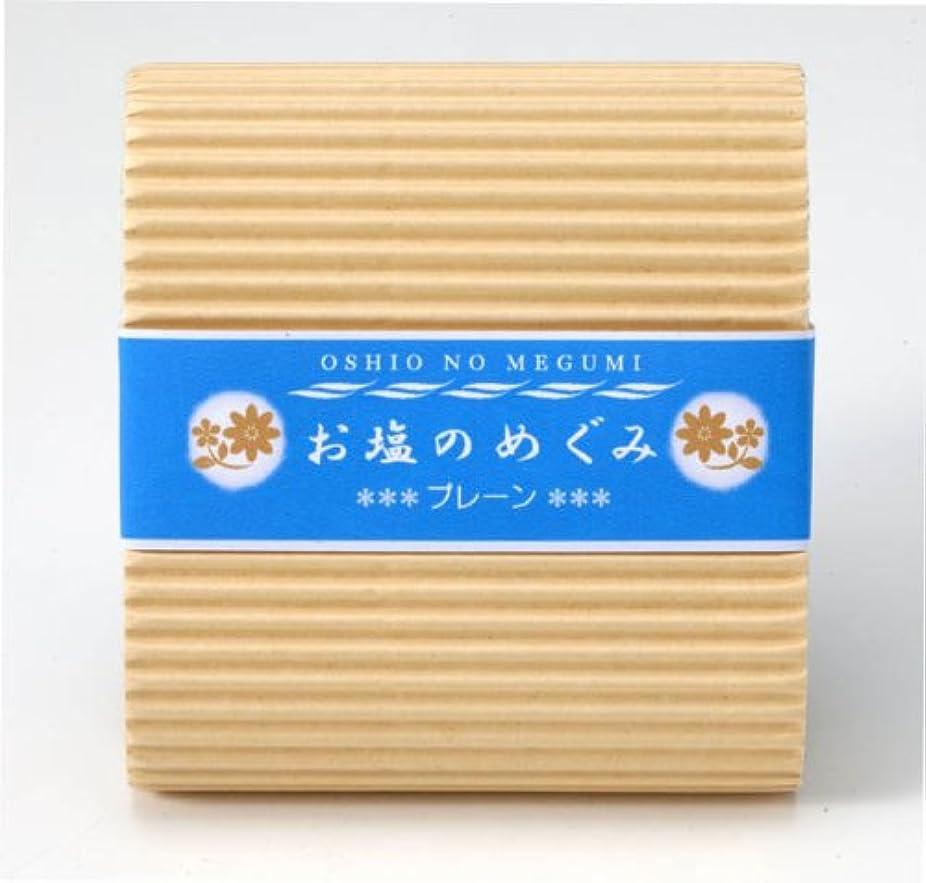 める神秘異常お塩のめぐみ プレーン 90g