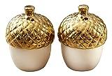 Kate Aspen Dipped Ceramic Acorn Salt and Pepper Shakers, White/Gold