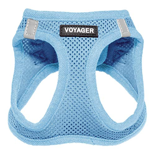 Best Pet Supplies Voyager Step-in Air Dog Harness - All Weather Mesh, Step in Vest Harness for Small and Medium Dogs, Baby Blue (Matching Trim), S (Chest: 14.5-17