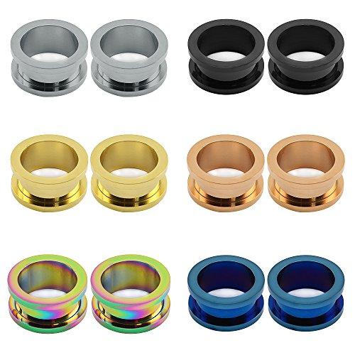 ZS 6 Pairs Stainless Steel Screw Fit Tunnels Plugs Flesh Expander Stretcher Ear Gauges Piercing (Gauge=00g(10mm))