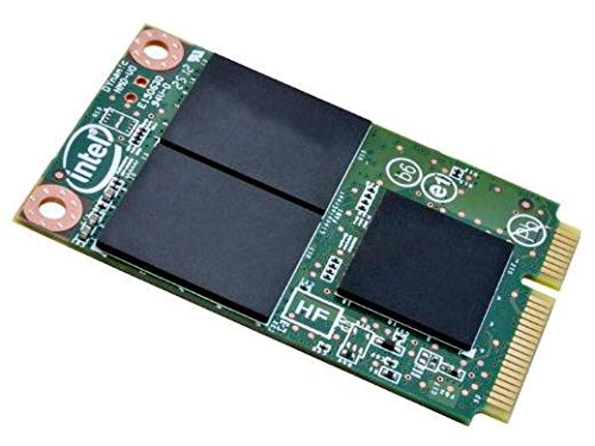 Intel SSDMCEAW080A401 530 Series 80GB mSATA SSD