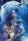 1art1 14081 Meiklejohn Graphics Poster - Moonlight