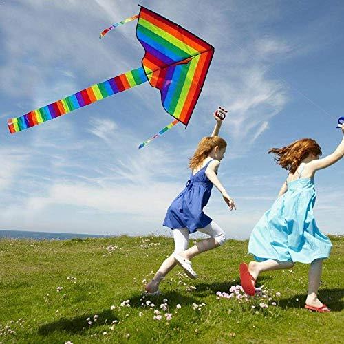 Una sola línea cometa grande de colores del arco iris de la cometa de la cola larga de 30 metros de nylon al aire libre de la resaca de los niños del juguete que vuelan niño de la cometa cometas al ai