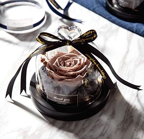 Rosa caliente en frasco La Bella Y La Bestia Eterna Rosa Roja Rosa Con Luz LED En Cúpula de Cristal Para Boda Fiesta