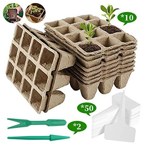 Navigatee 10pcs Bonsai Starter Kit Anzuchtset inkl - Pflanzset aus Kokostöpfen, Samen & Erde - nachhaltige Geschenkidee für Pflanzenfreunde