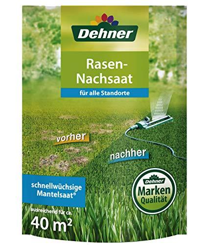Dehner Rasen-Nachsaat, 0,55 kg, für ca. 40 qm