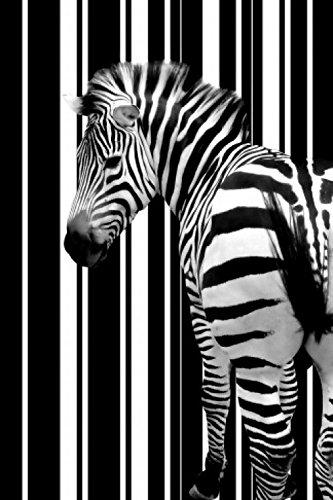 1art1 Zebras - Barcode Zebra Poster 91 x 61 cm
