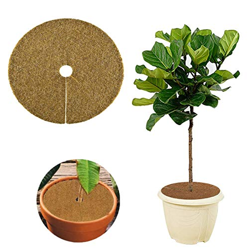 Gxhong Anillos de Fibra de Coco Protección Plantas Disco de Mantillo Coco para...