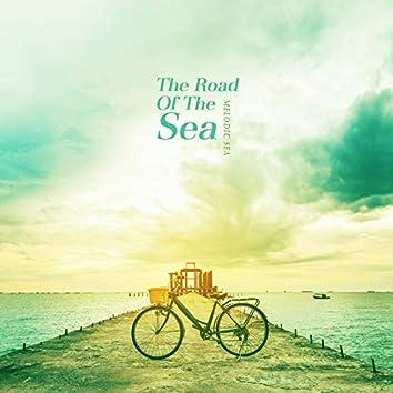 바다로 가는 길