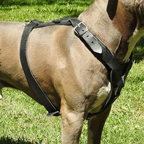 Pettorina per cani SK9, qualità tedesca speciale pensata per cani da lavoro realizzata in pelle naturale (taglia L 80-100 cm, nero)