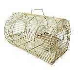 Electric Rat Traps