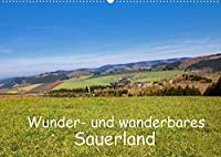 Wunder- und wanderbares Sauerland (Wandkalender 2022 DIN A2 quer): Schoenheiten der Sauerlaender Landschaft beim Wandern entdeckt von der Fotografin Brigitte Duerr (Monatskalender, 14 Seiten )