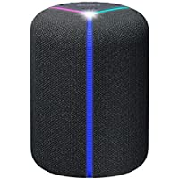 Sony XB402G Wireless Bluetooth Speaker with Google Assistant Built-in