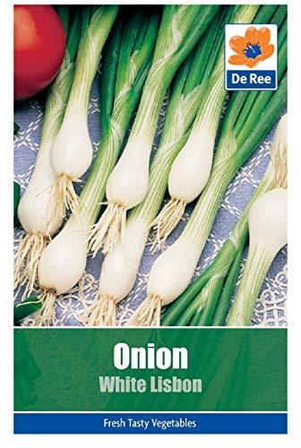 Gemüsesamen - Zwiebel (Weiß Lissabon)