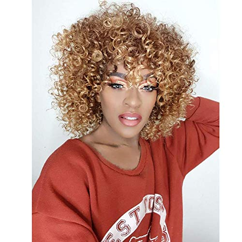 Aisi Hair Synthetic African American Wigs Kinky Curly Hair Wig Import It All