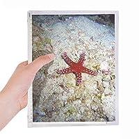 海の水の光のヒトデの自然写真 硬質プラスチックルーズリーフノートノート