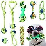 AMAYGA Hundespielzeug Seil,Tau Hund Spielzeug,Spielseil für Haustiere,Interaktives Kauspielzeug Spielzeug,Vorteilhaft für die Zahnreinigung des Hundes,für Welpe Kleine/Mittlere Hunde
