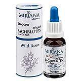 MirianaFlowers Wild Rose 20ml Bachblüten Stockbottle -