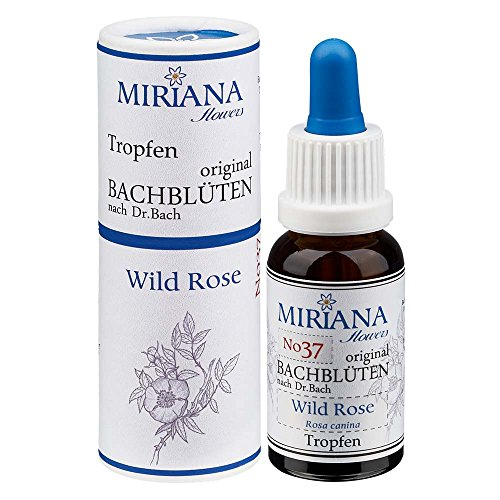 MirianaFlowers Wild Rose 20ml Bachblüten Stockbottle