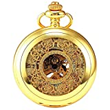 Steampunk Vintage Roman Letters Design Case Mechanical Pocket Watch with Chains for Xmas Gifts (Gold)