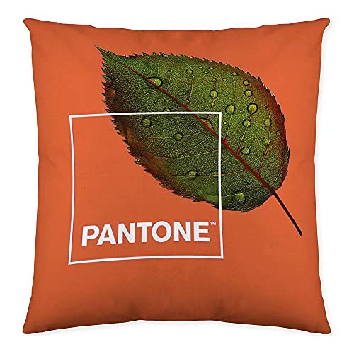 Pantone Funda de cojín Reversible Naturel 50x50 cm