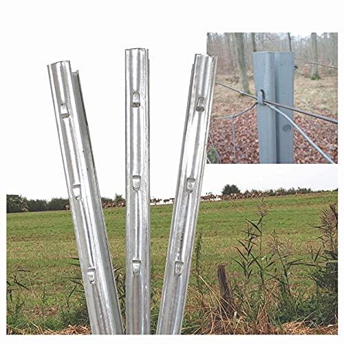 TRUTZHOLM Z-Profil Zaunpfosten 2 m 10x verzinkt hochwertige Zaunpfähle inkl. Haken | Metallzaunpfosten für Wildzaun Weidezaun Drahtzaun Wildschutzzaun Knotengeflecht Zaun Forstprofil Forstzaun