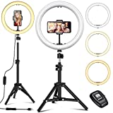 12' Selfie Ring Light with Tripod Stand - Dimmable Desktop Ringlight with DIY Ports, Circle Light LED Camera Lighting for Live Stream/Makeup/YouTube/TikTok, Compatible with iPhone Android