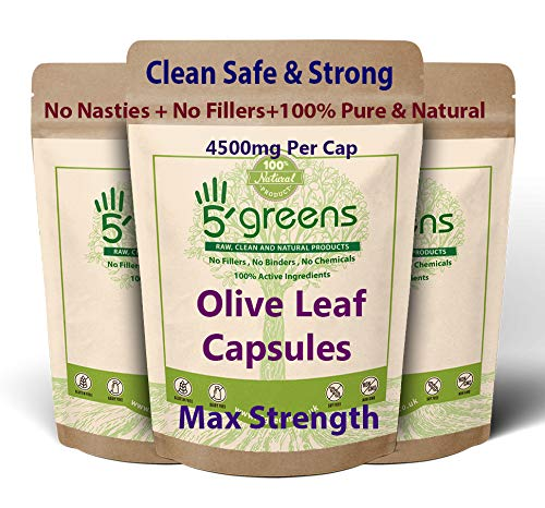 Olive Leaf Extract (Non-GMO) Super Strength: 40% Oleuropein - 450mg 10:1 Strength Equivalent to 4500mg per Capsule - Vegetarian - No Oil -120 Capsules