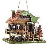 Songbird Valley Bird House, Modern Sparrow and Chickadee Bird House Wood Cabin