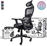 NOUHAUS Ergo3D Ergonomic Office Chair - Rolling Desk Chair with 3D Adjustable Armrest, 3D Lumbar...