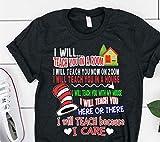 Cat In The Hat I Will Teach Because I Care Teacher Shirt-Dr Seuss Inspired Shirt-Teacher Raglan