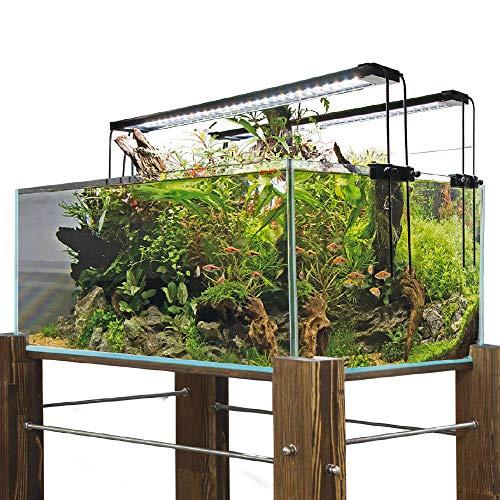Amtra Shallow Badewanne aus Glas, extragroß, 75 x 50 x 30/110 Liter