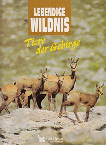Tiere der Gebirge - Lebendige Wildnis. Große Pandas, Kondore, Braunbären, Lamas, Makaken, Gemsen, Murmeltiere und Dickhornschafe.