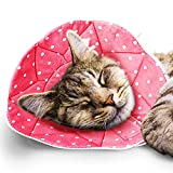 SunGrow Cat Recovery Soft Cone, Fits 7 to 9 Inches Neck Circumference, Post Surgery Stress Relieving Pillow with Adjustable Strap Enclosures, Pink Color