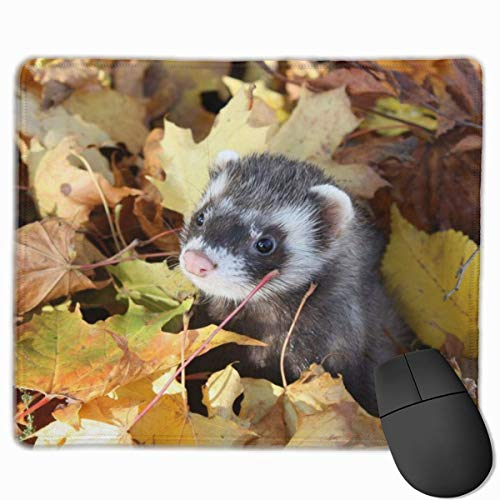 Muster Frettchen an der Leine im Herbst Rechteckiges rutschfestes Gaming-Mauspad Tastatur Gummi-Mauspad für Heim- und Büro-Laptops