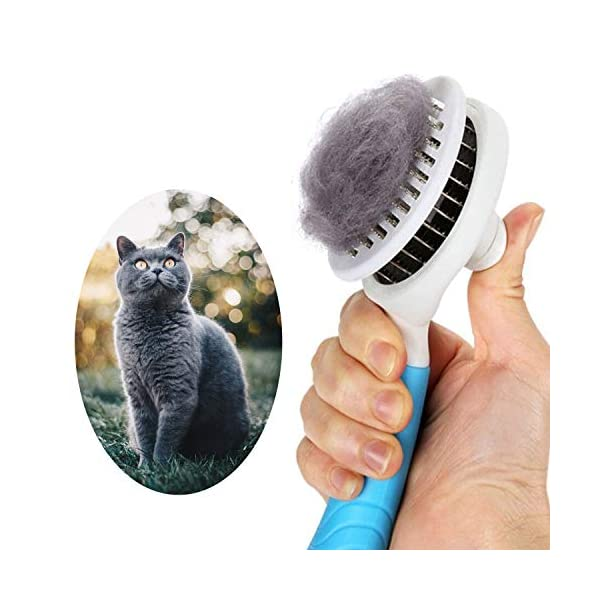 itPlus Cat Grooming Brush, Self Cleaning Slicker Brushes for Dogs Cats Pet Grooming...