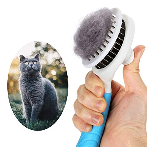 itPlus Cat Grooming Brush, Self Cleaning Slicker Brushes for Dogs Cats Pet Grooming Brush Tool Gently Removes Loose Undercoat, Mats Tangled Hair...