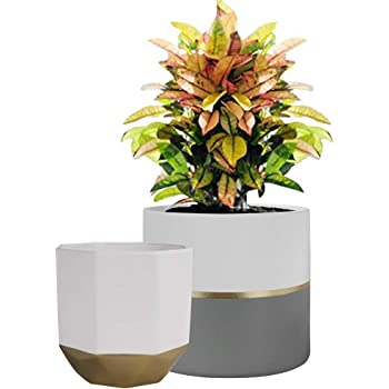 Decorazione per casa e Ufficio Vaso in Ceramica per Cactus Easma Vaso per Fiori e Piante grasse per Interni ed Esterni