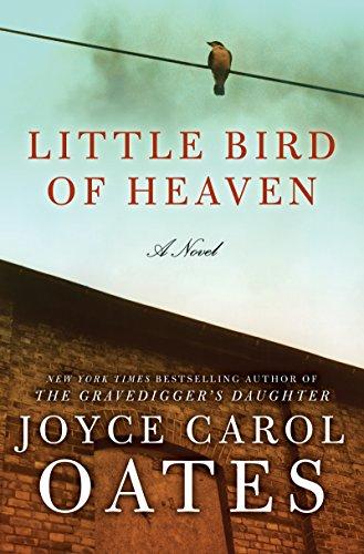 Little Bird of Heaven: A Novel