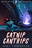 Catnip Cantrips (Twilight Hollow Witchy Cozy Mysteries Book 2)