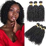 Ladiary pelo natural humano pelo rizado natural 3 paquetes extensiones de cabello...